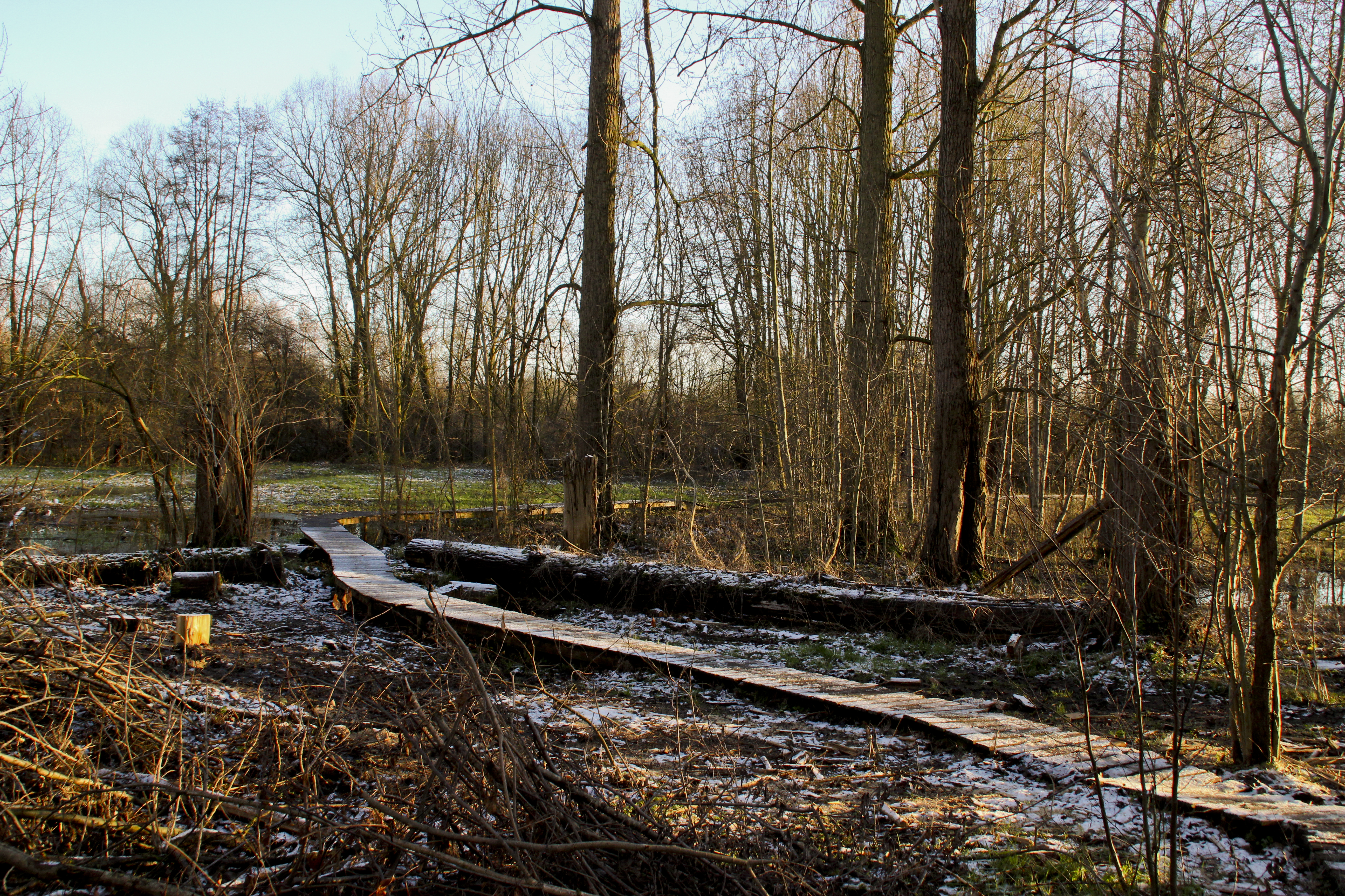Mindsphotography _ Landschap _ Natuur